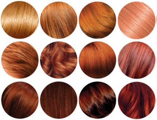 LACTODIOL TREATMENT SHAMPOO: COLOR-TREATED HAIR
