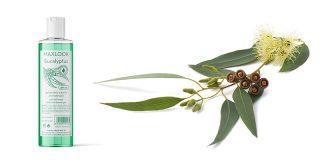 Maxlook Gel de Ducha: Eucalyptus