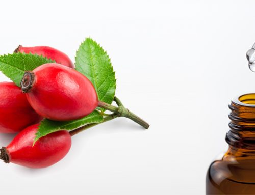 NAILINE ROSEHIP OIL